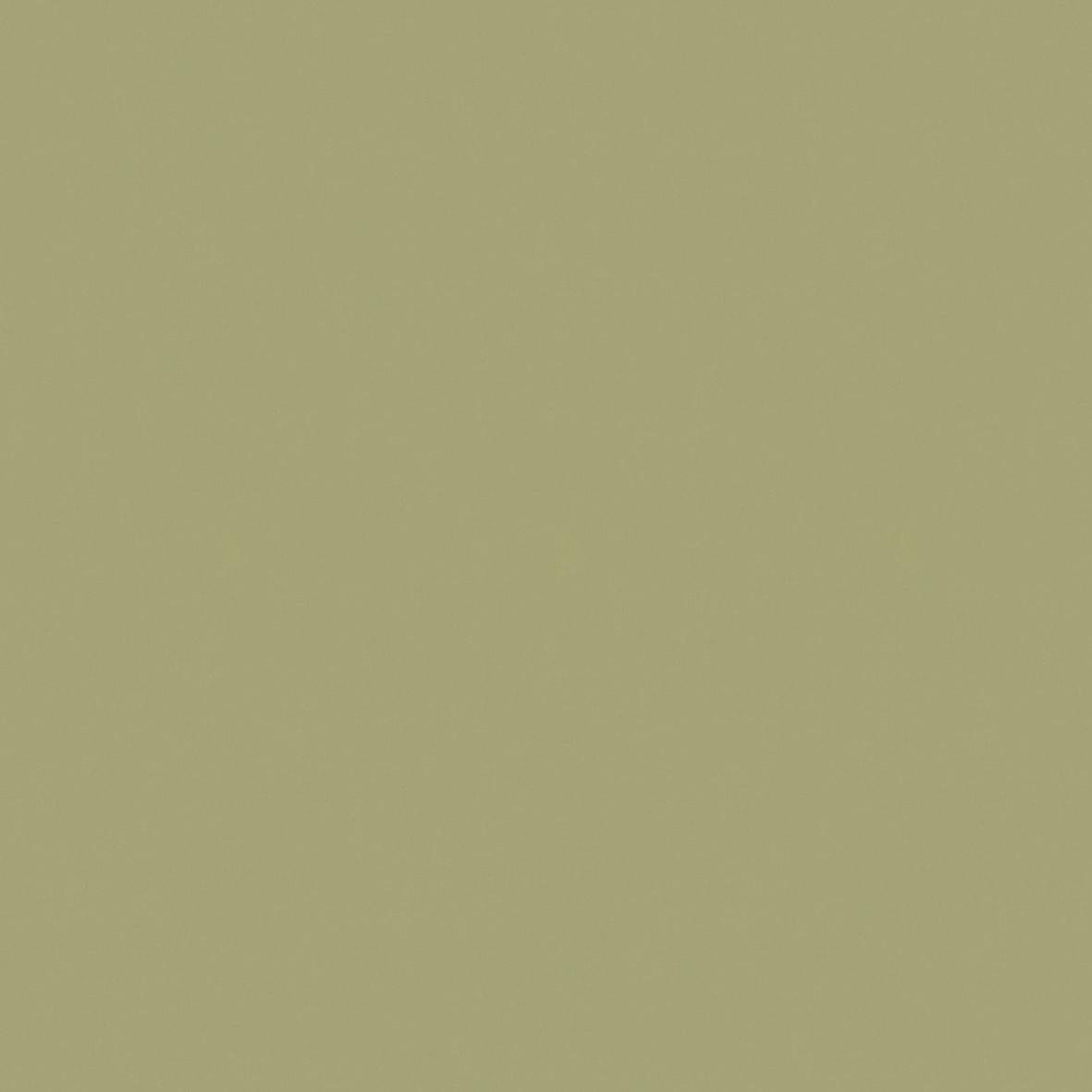 Roller_Swatch_Banlight_Duo_FR_Green_RE03318