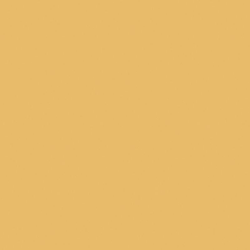Roller_Swatch_Banlight_Duo_FR_Mustard_RE0343