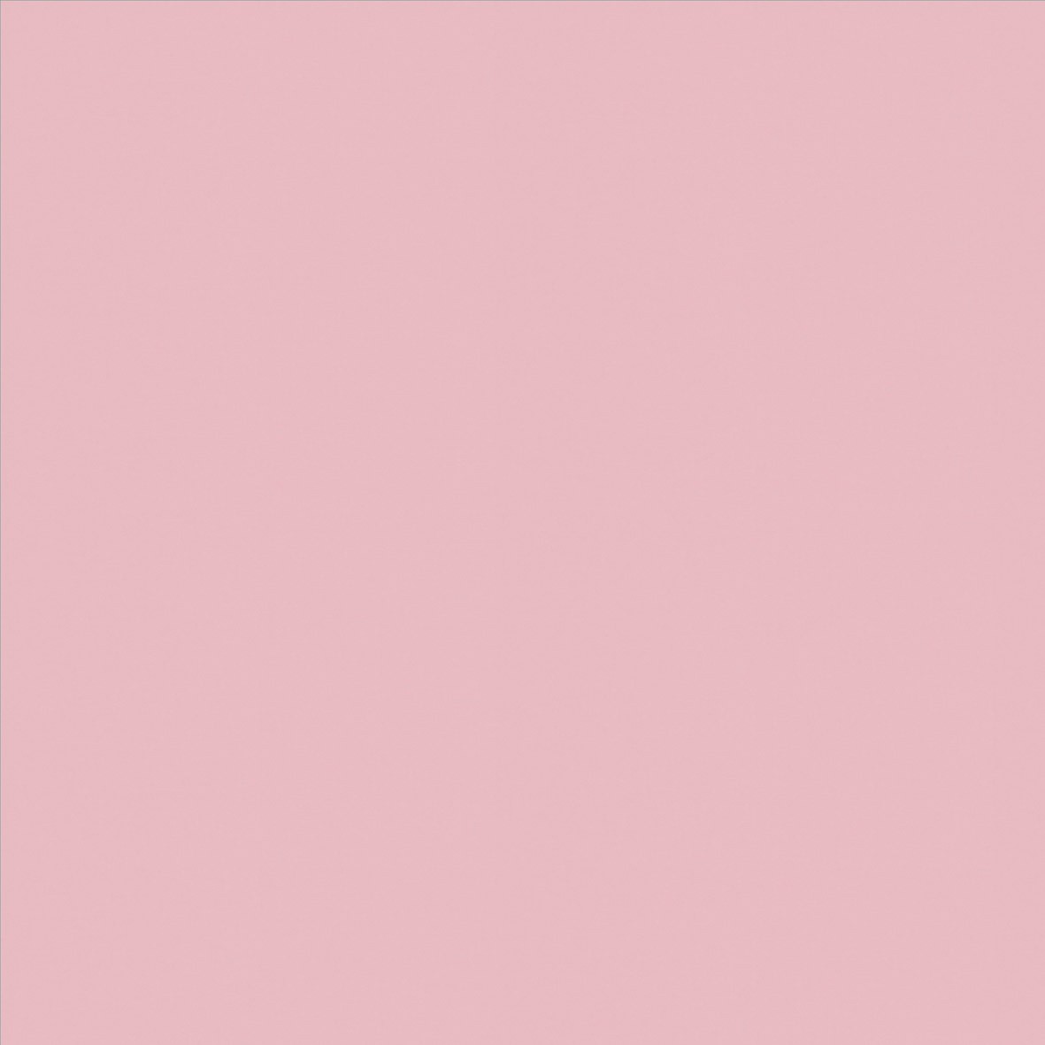 Roller_Swatch_Banlight_Duo_FR_Pink_RE0323