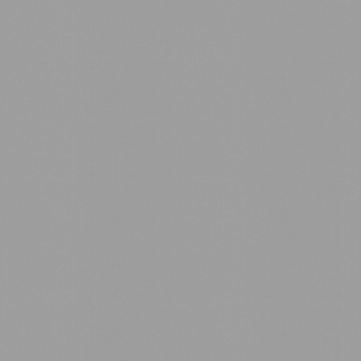 Roller_Swatch_Banlight_FR_Grey_RE0289